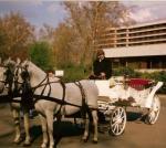 Hintó bérlés - Esküvői hintó
